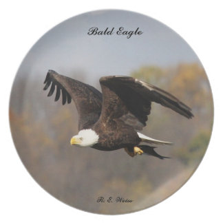Plate with Bald Eagle carrying a fish.