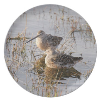 Plate with print of sandpipers