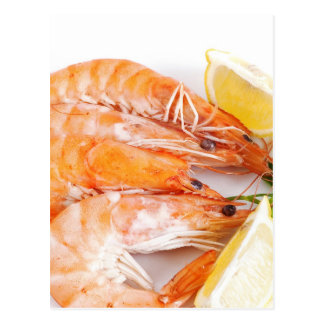 plate with shrimps postcard
