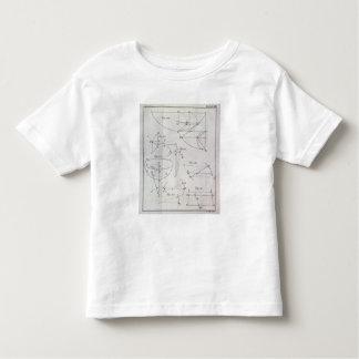 Plate XIX, Illustrating Proposition LXV Tshirt