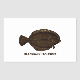 Platija de Blackback Pegatina Rectangular