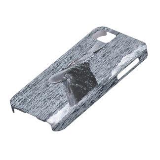 Platija de la ballena jorobada con el caso del iph iPhone 5 Case-Mate cárcasa