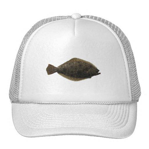 Platija de verano gorras