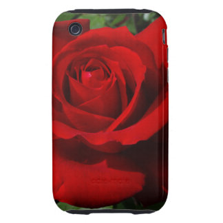 Platino precioso híbrido del rosa de té tough iPhone 3 protector