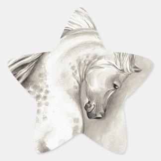 Platinum arabian star sticker