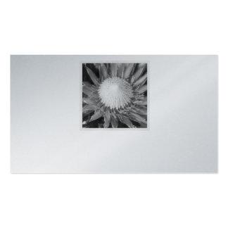 Platinum Business Card with Unique Protea Design