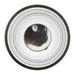 Plato siamés de la comida para gatos cuenco acrílico