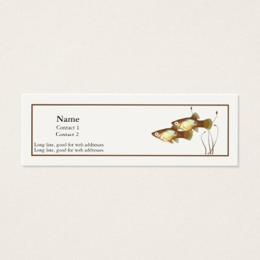 Professional Business Platy Profile Card