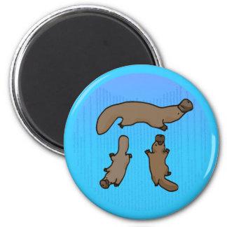 """Platypi"" Three Platypuses Greek Pi 2 Inch Round Magnet"