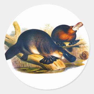 Platypus Classic Round Sticker