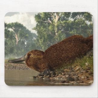 Platypus en la orilla alfombrillas de raton