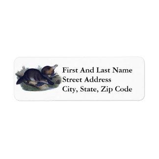Platypus en un ejemplo del registro etiqueta de remitente