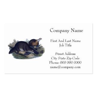 Platypus en un ejemplo del registro tarjetas de negocios