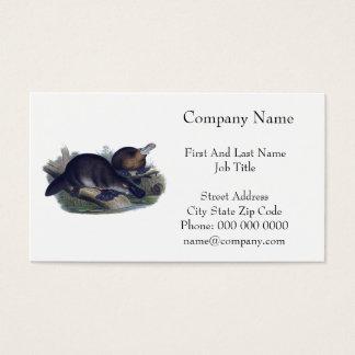 Platypus en un ejemplo del registro tarjetas de visita