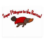 Platypus estupendo postales