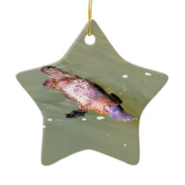 PLATYPUS IN WATER EUNGELLA AUSTRALIA CERAMIC ORNAMENT