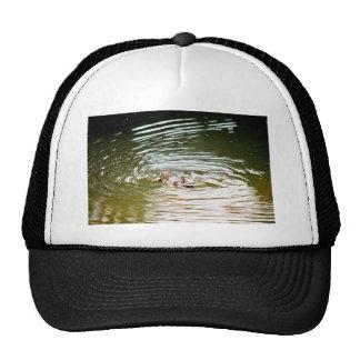 PLATYPUS IN WATER EUNGELLA AUSTRALIA TRUCKER HAT