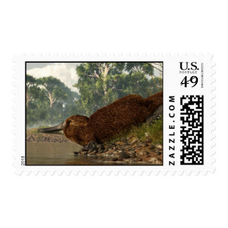 Platypus on the Shore Stamps