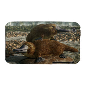 Platypuses iPhone 3 Cases