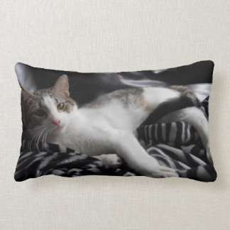 Play and Rest Cat Pillow