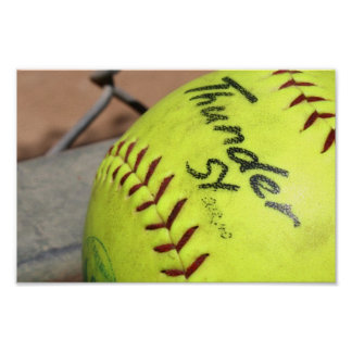Play Ball! Poster