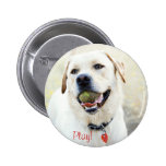 Play Dog Pinback Buttons