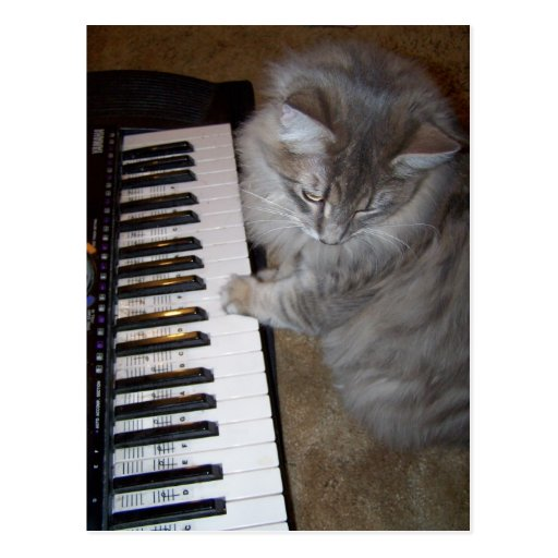 Play that music Raisin Postcard