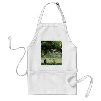 Play time adult apron