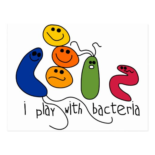 Play with Bacteria Post Card