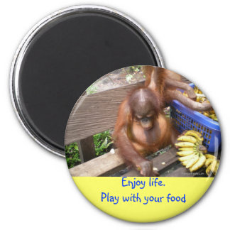 Play with Your Food Humor Magnet