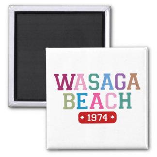 Playa 1974 de Wasaga Imán