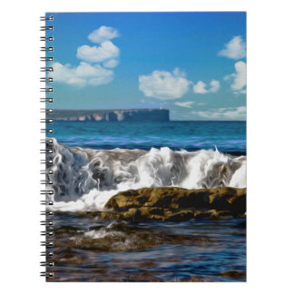 Playa 37 de Hyams Libros De Apuntes