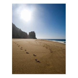 Playa 3 de Cabo San Lucas Tarjeta Postal