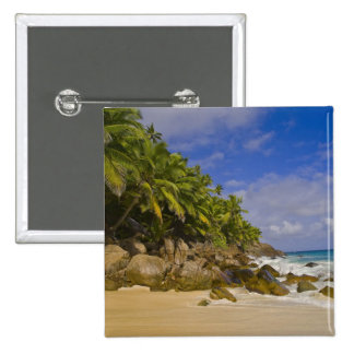 Playa 4 de Anse Victorin Pins