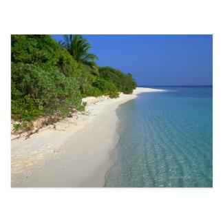 Playa 4 postal