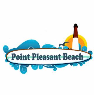 Playa agradable del punto esculturas fotograficas