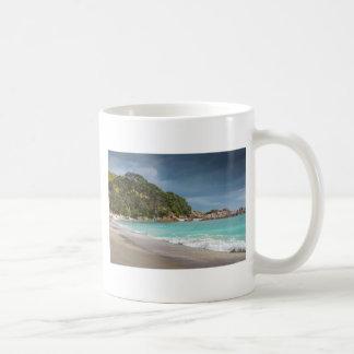 Playa arenosa de la franja de los árboles de taza