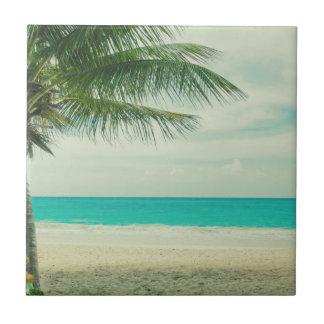 Playa Tejas