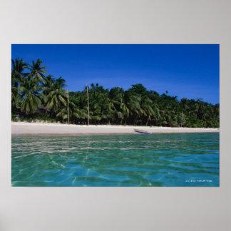 Playa, balsa en una distancia póster