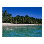 Playa, balsa en una distancia tarjetas postales