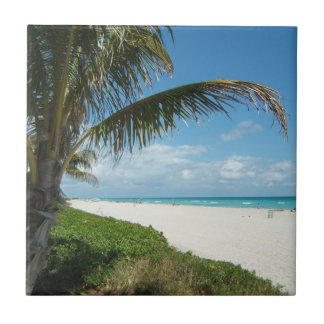 Playa blanca w Palm de la arena Azulejos