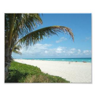 Playa blanca w/Palm de la arena Fotografía