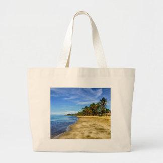 Playa Bolsas