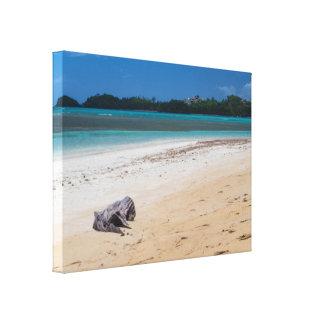Playa Bonita Beach Dominican Republic Island Canvas Print