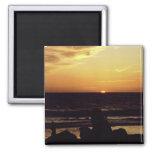 Playa CA de Venecia de la puesta del sol Imán De Frigorífico