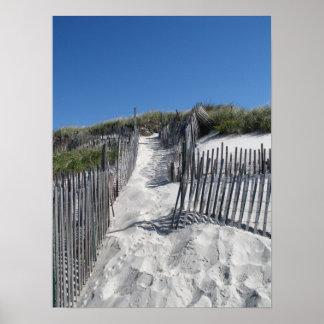 Playa Cape Cod de Chapin Posters