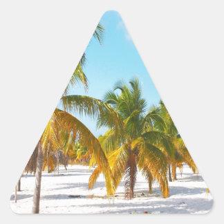 Playa Cayo de Sirena de la palmera largo Calcomanía Trianguloada
