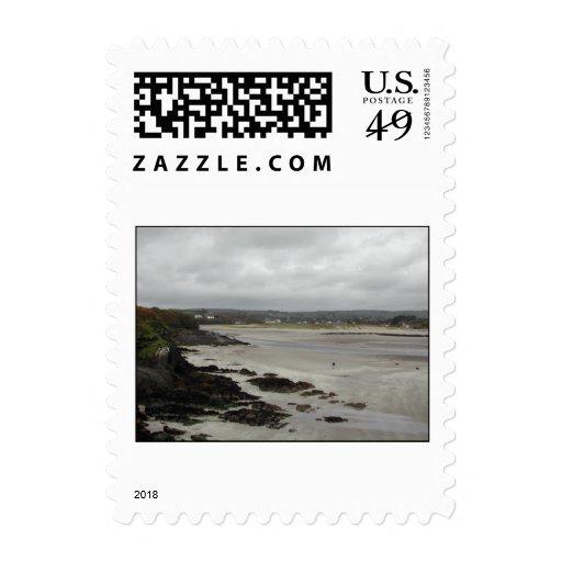 Playa cerca de la bahía de Rosscarbery, Irlanda Sello