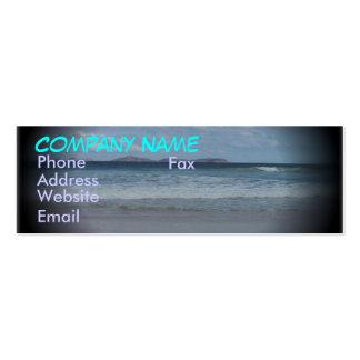 Playa chillona 1 tarjetas de visita mini