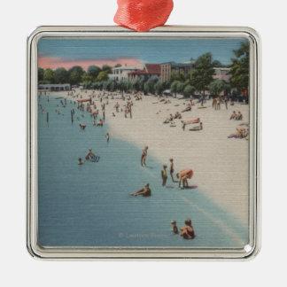 Playa colonial, VA - escena que toma el sol y que Ornaments Para Arbol De Navidad